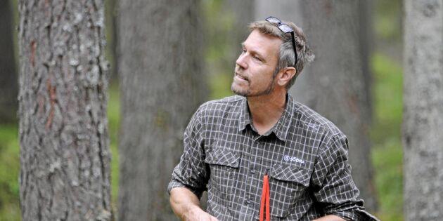Stor brist på fällor i kampen mot granbarkborre