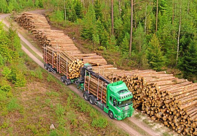 Det är inte längre bara den traditionella skogsindustrin som tillverkar sågade trävaror och pappersmassa som vill använda virke från skogen. Andra branscher intresserar sig också för skogsråvaran.