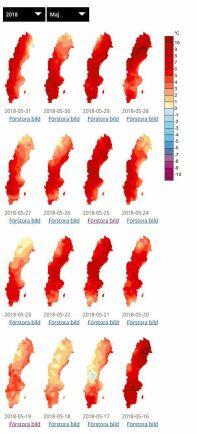 Så mycket varmare än normalt var andra halvan av maj.