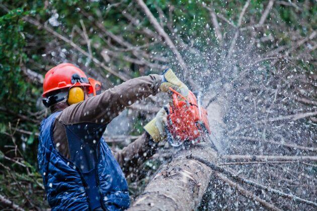 Olyckor på arbetet inträffar ofta vid vardagliga sysslor.