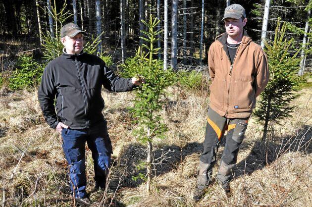 Ulf Rudmarker (till höger) ville att älgavskjutningen skulle fortsätta på en hög nivå. Men på samrådsmötet blev det en kompromiss på 98 älgar.