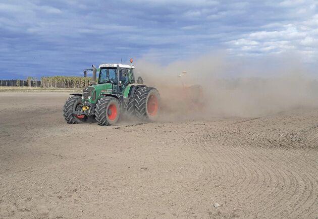 Vårbruket var torrt och dammigt på många håll.