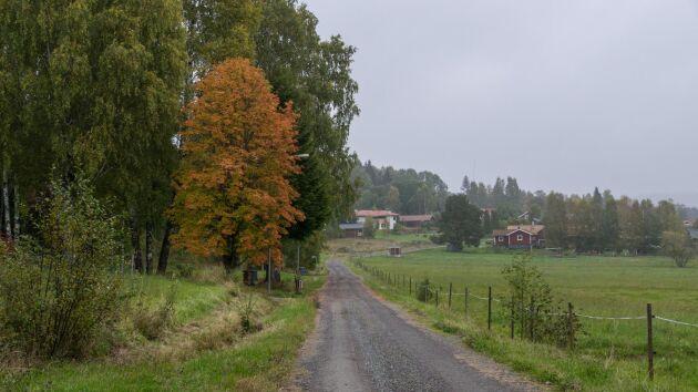 Landsbygdsväljarna har insett att Annie Lööf (C) förefaller vilja ge Socialdemokraterna fortsatt inflytande, skriver debattören.