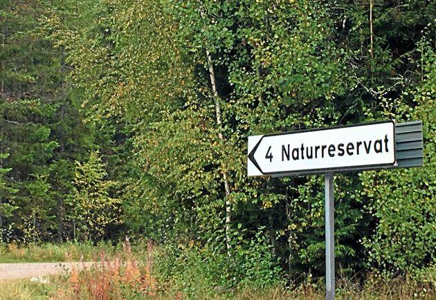 Enligt den nya statistiken från SCB, Skogsstyrelsen och SLU är 9 procent av Sveriges skogsmark formellt skyddad.