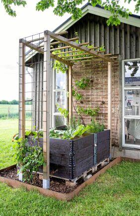 Även grönskan får utrymme i Trines trädgård