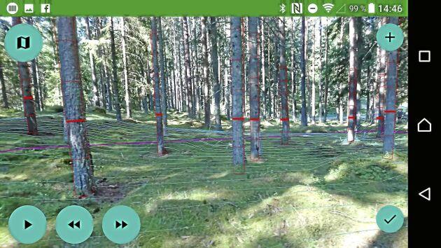 Mobilappen filmar och bygger upp en 3D-bild av ett mindre skogsområde. Utifrån de uppgifterna kan man sen få fram olika skogliga data som till exempel grundytor och medelstamsdiameter.