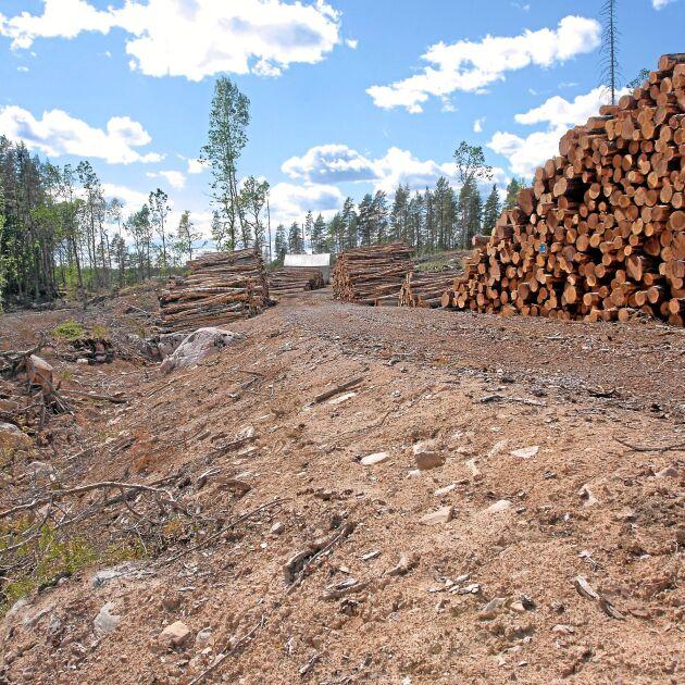 Det är mycket att tänka på när man bygger skogsvägar. Bland annat måste vatten ledas bort från vägen. Antingen genom ett dike eller ett sidotag så att vattnet kan rinna av på sidan av vägen.
