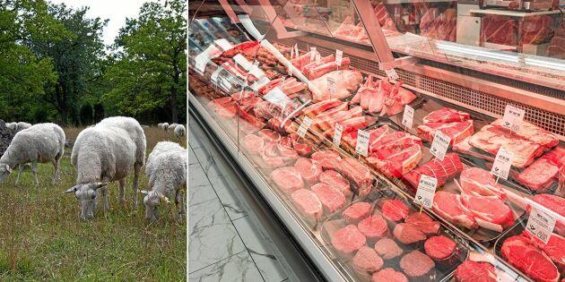 Brist på lammkött efter fjolårets torka