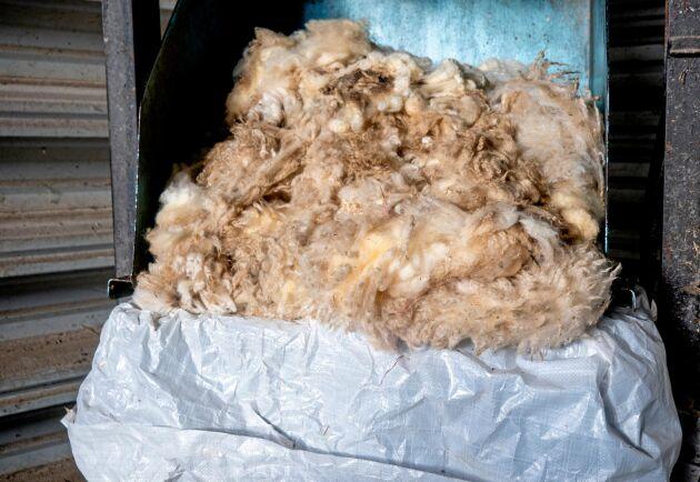 Ullpackningsmaskinen på Hornsunds gård följde med när Johnny Nederman tog över arrendet. Den kommer till god användning när ullen ska säljas och skickas vidare.