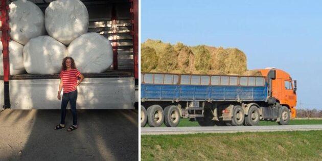Transportregler skapar kaos vid foderimport