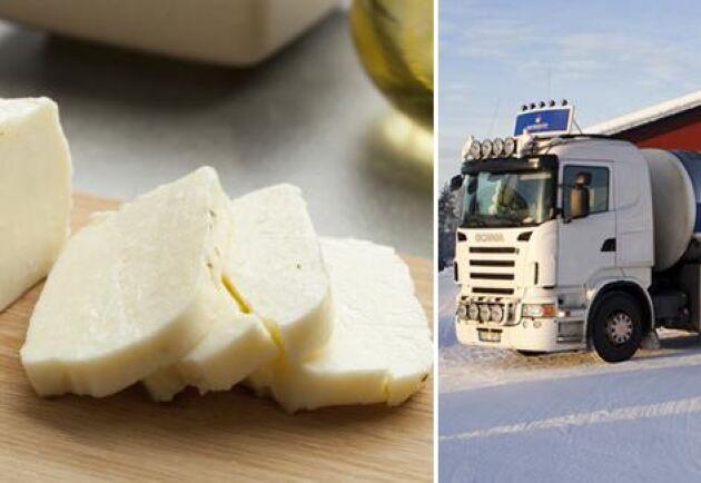 Norrmejerier kommer göra en egen variant av halloumi gjord på mjölk från norrland. Halloumin kommer sedan att säljas av Ica. Arkivbild.