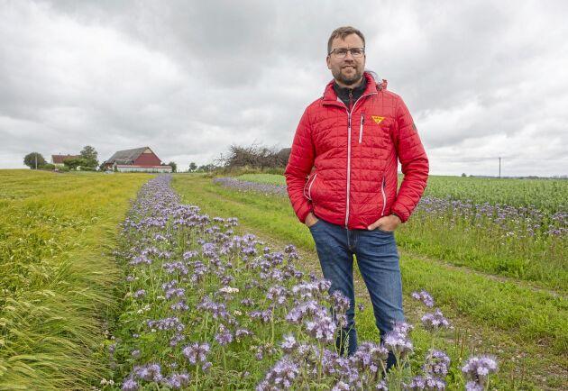 Staffan Holm vid ett av sina kornfält som har fått en 2232 meter lång blommande kantzon.