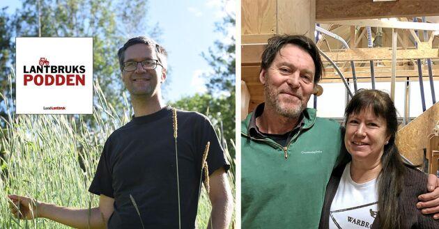 Spannmålsforskaren Matti Wiking Leino och Warbro kvarns Thomas Björklund och Maud Brinckmann.