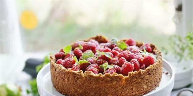 Halloncheesecake med kola och havrebotten – krispig, len och syrlig