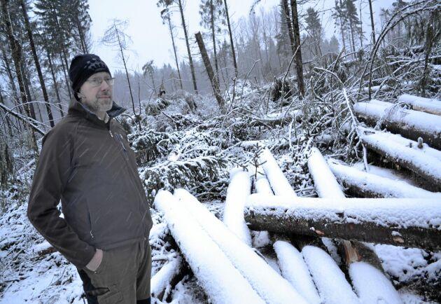 – Den bästa skattningen vi kan göra just nu är att det blåst ned mellan 30 000 och 50 000 kubikmeter, säger Fredrik Landström på Hargs Bruk.