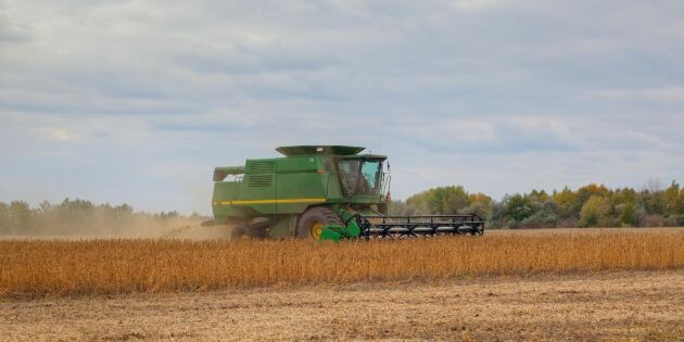 Importerad GMO-soja - het potatis ur miljöhänseende