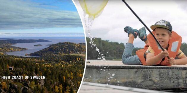Kolla in! Filmerna som lyfter Sveriges småorter