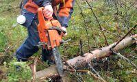 Nya tillbehör för säkrare arbete i skogen