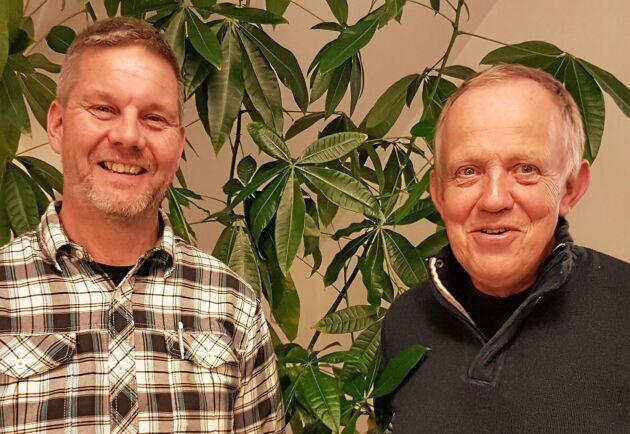 Göran Appelquist, till vänster, och Lars Olsson vill att Gotlandsfurans unika egenskaper tas till vara bättre.