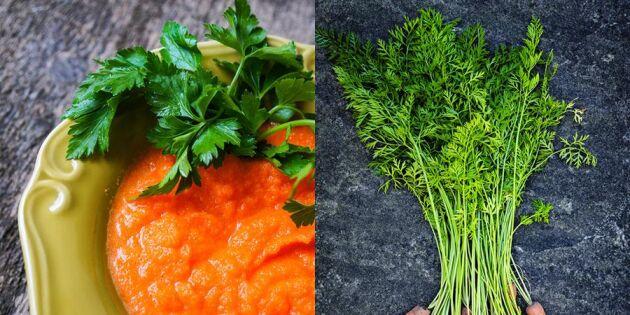 Bli klimatian med 5 tips – lägg klimatsmart mat på tallriken