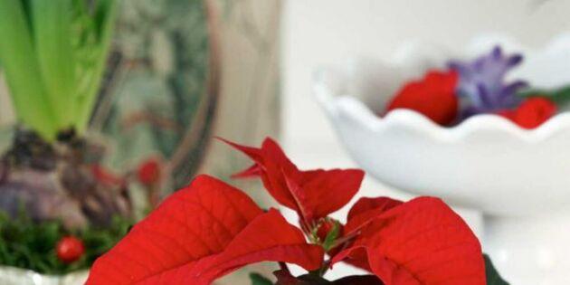 5 smarta tips! Julpynta med dina loppisfynd