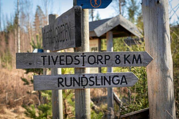 I Tivedens nationalpark i nordligaste Västergötland kan du vandra i gammal skog.