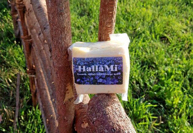 Osten som görs i Undersvik är gjord på komjölk och är mer krämig och mindre salt än den traditionella halloumiosten som är gjord på får- och getmjölk.