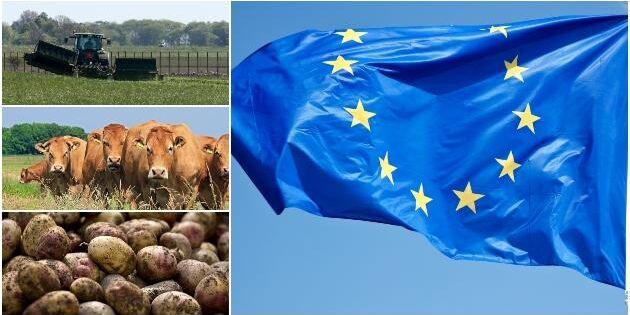 EU:s jordbrukspolitik sågas av forskare