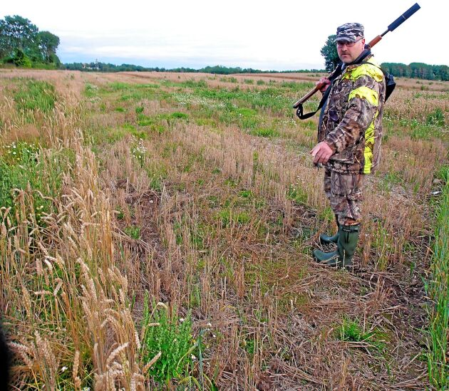 Lantbrukarna mellan Ruda och Långemåla hoppas att vetefältet ska förbli orört.
