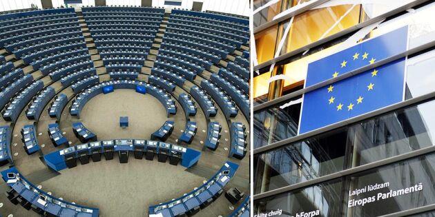 Cap överskuggar allt i nästa EU-parlament