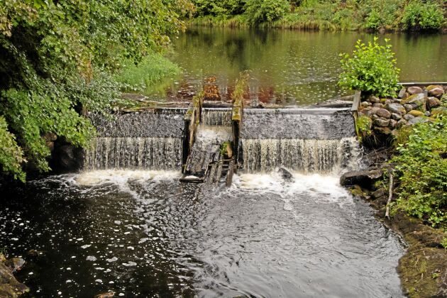 Utrivningen av gamla dammar fortsätter. Sedan 2010 har 24 dammar i Örebro län rivits ut. Ytterligare fem utrivningar är nära förestående för att få fria vattenvägar för öring. I Nora vill Naturvårdsverket och Länsstyrelsen riva Järle kvarndamm från medeltiden. Kritiker anser att gamla kulturmiljöer med historiska värden väger lätt när dammar nu rivs av miljöskäl.