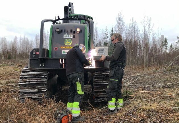 Någon fara för skogsbrand är det inte i novemberblötan.