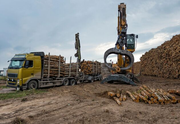 De stora skogsbolagen går bra – men för entreprenörerna är det tuffa tider.