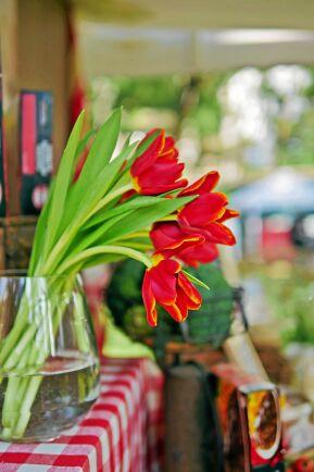 Skönt slarvig och tippad bukett med röda tulpaner.