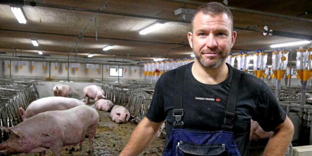 Dansk grisbonde satsar på lösdrift