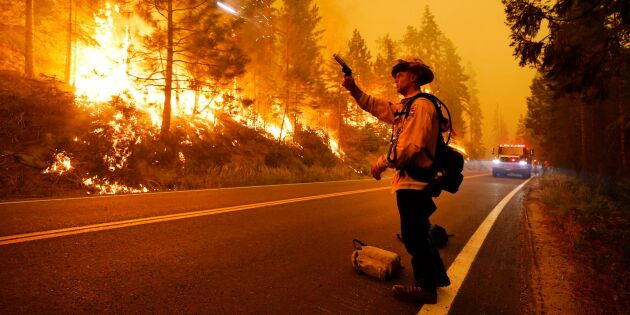 Det ligger bakom jättebränderna i USA