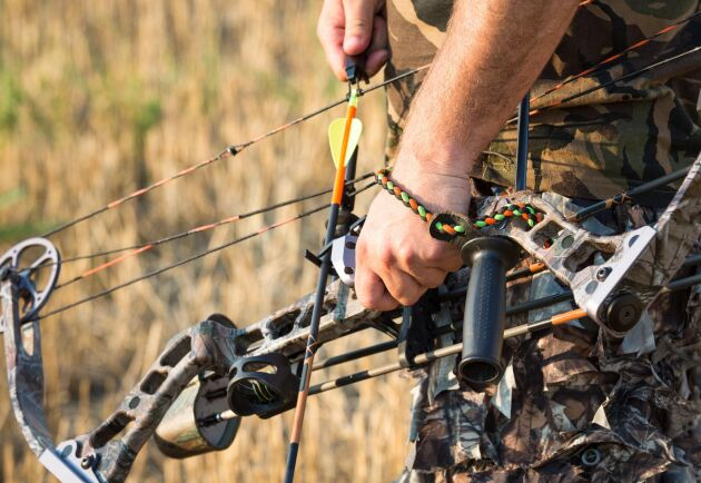 Förslaget om att tillåta jakt med pilbåge sågas av flera remissinstanser.