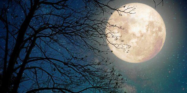 5 fascinerande fakta om månen som du (kanske) inte visste!