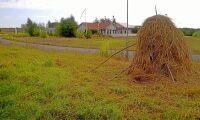 Norge förlänger tullfriheten på foder