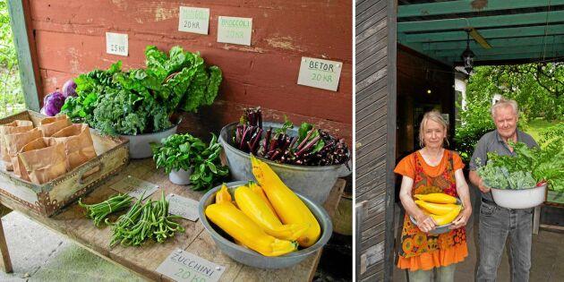 Starta gårdsbutik: Så kan du tjäna extra på dina grönsaksland