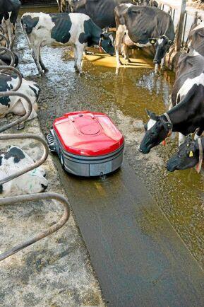 Lely Discovery 120 Collector. Är en utgödslingsrobot som kan rengöra såväl plana ytor som spaltgångar. Först sprayar den vatten och blöter upp gödseln. Den skrapas sedan och sugs upp i en behållare på 340 liter. Golvet bakom maskinen väts för att minska halkrisken. Vid full last går den till gödselkulverten och tömmer för att sedan gå till laddstationen. Där tankas el och sprayvatten. Innandömet är flexibelt, när vattentankarna sjunker ihop ökar gödselutrymmet. Roboten kan styras med smartphone och uppges serva upp till 100 kor. Leverantör: Lely Nordic A/S.