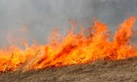 Hundratals skogsbränder drabbar Arktis