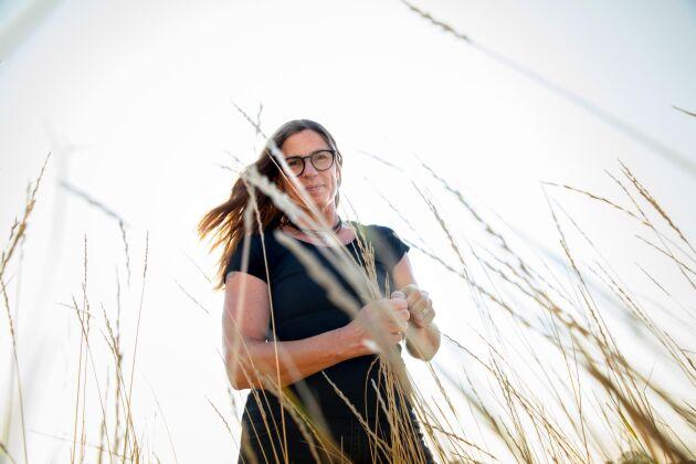 """""""Den kan ge oss människomat genom sin kärna, foder till våra djur, vi kan också använda materialet i en biogasreaktor och få energi"""", säger Linda-Maria Dimitrova Mårtensson, universitetslektor på SLU, om kernza"""