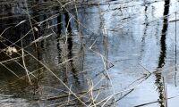 För högt läckage av ogräsmedel i vatten