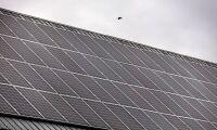 Låga elpriser hotar gröna investeringar