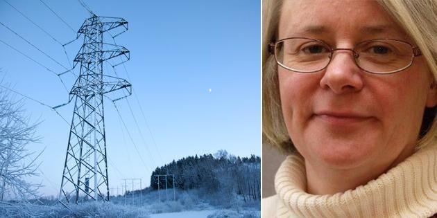 Expert: Mycket liten chans att stoppa kraftledning