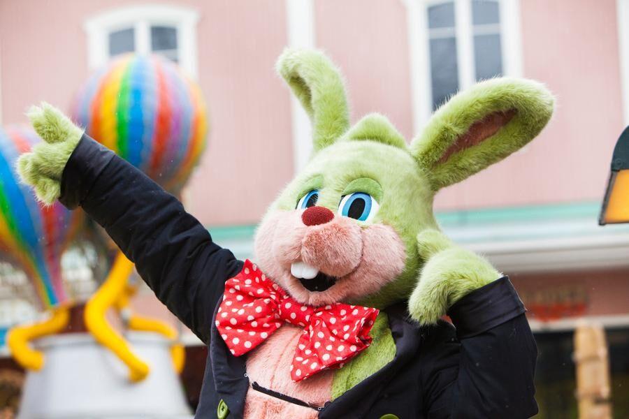 Kaninen Kanne sägs vara den gladaste av alla Lisebergskaniner. Foto: Stefan Karlberg/Liseberg
