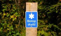 Varnar för oklara kunskapskrav i skogen