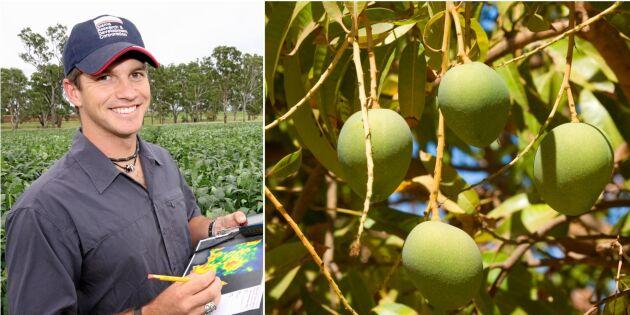 Ny jordbruksteknik i fokus –forskar för 45 miljoner