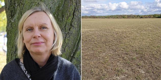 Lantbrukare på Öland får kalla handen av ministern